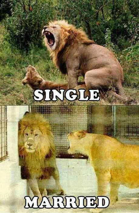 single-vs-married-01