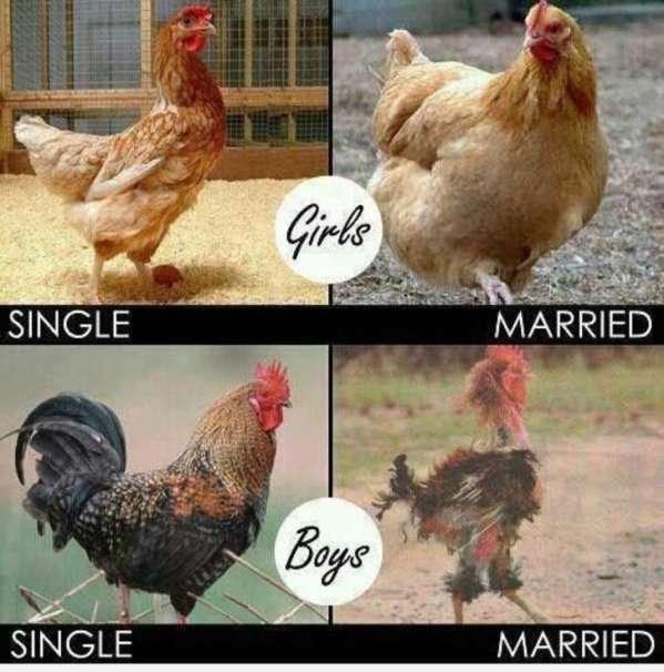 single-vs-married-05