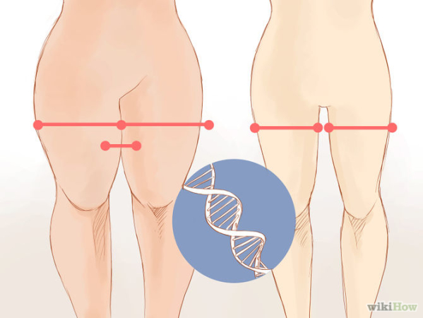 get thigh gap fast exercises to get thigh gap can mesomorphs get thigh gaps