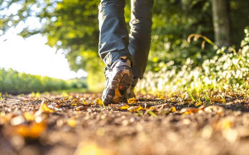 jog and walk to lose weight just walk to lose weight
