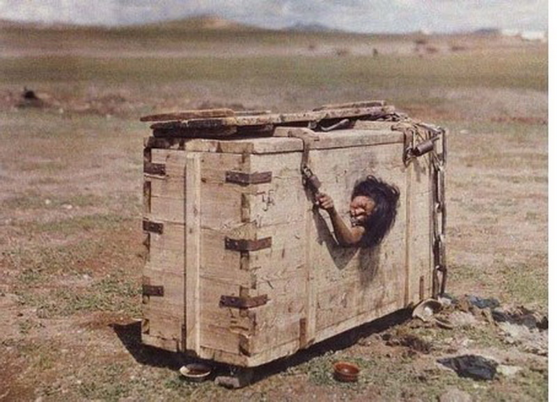 disturbing pictures from Mongolia. Disturbing pictures of starvation.