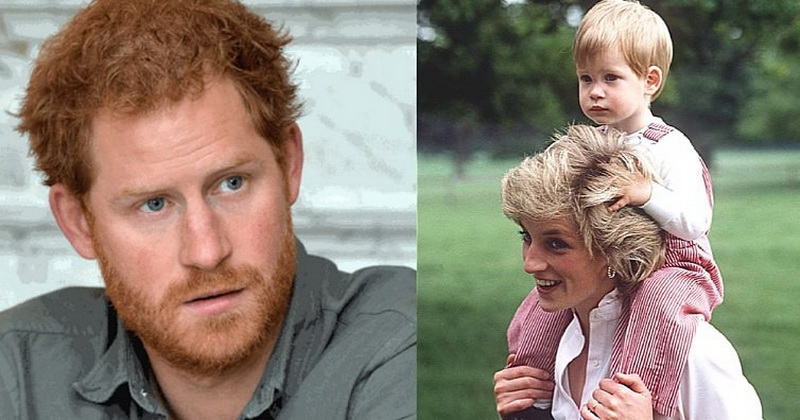 Prince Harry Was Hiding This About Princess Diana And It