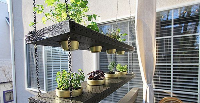 Stylish floating interior garden