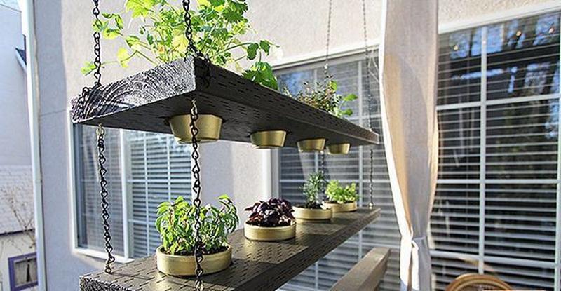 Stylish floating interior garden