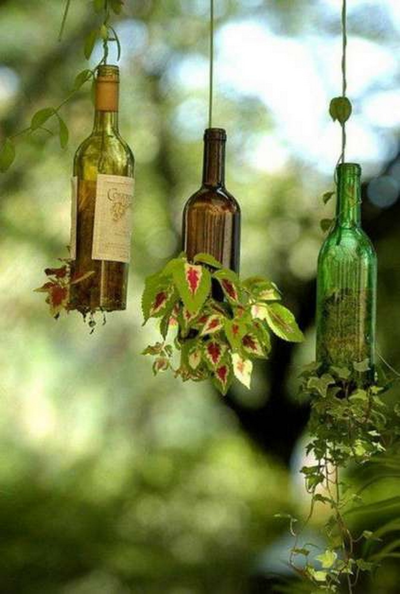Long wine bottles