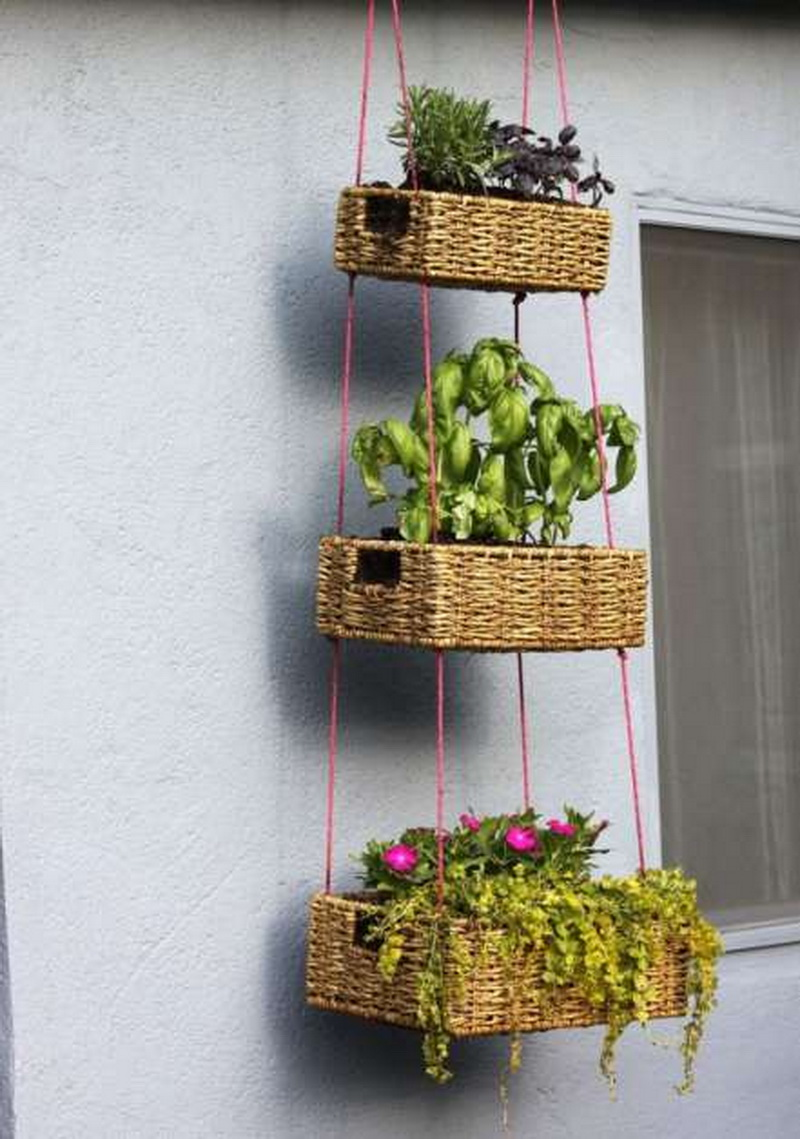 Vegetable baskets